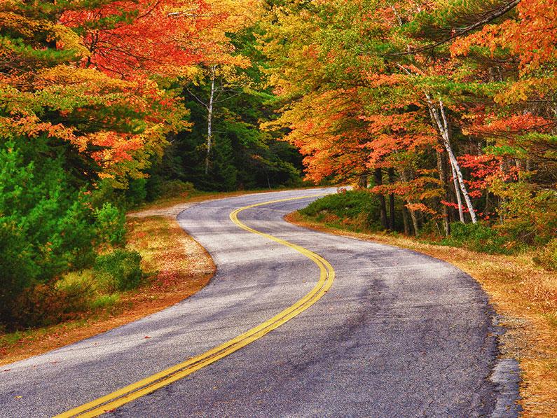 Fabulous Fall Day Trips