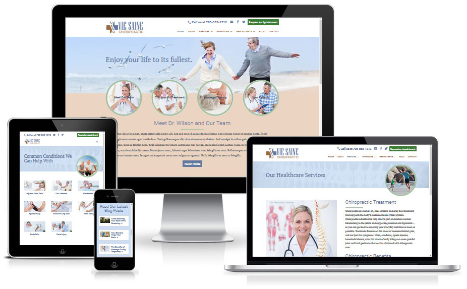 Vie Saine - WordPress Divi Child Theme for Chiropractors and Other Complementary Health Professionals